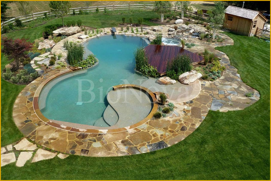 Questar pools a bionova dealer partner provides the cutting edge in natural swimming pool nsp Natural swimming pool builders