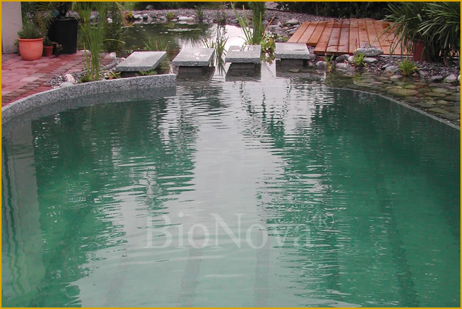 Questar Pools A Bionova Dealer Partner Provides The Cutting Edge In Natural Swimming Pool Nsp
