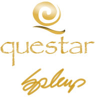 Questar Pools International Pool Designer home page